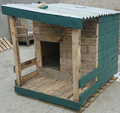 Deluxe kennel